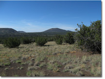 Alpine Ranches Real Estate For Sale