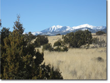 Acreage in Flagstaff for sale